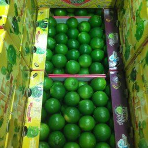 citron vert 4 primeurdusud.fr Livraisons de Fruits et Légumes à domicile sur Marseille